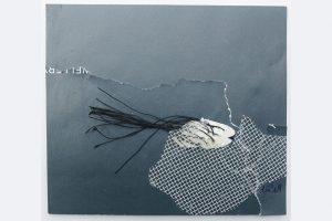 Dorothee Herrmann, aus der Serie: denk ich an Grönland collagen mixed media, gerahmt 40x30 cm je 180 €, 0731-710484